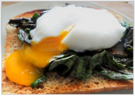 Poached Egg on Wilted Greens